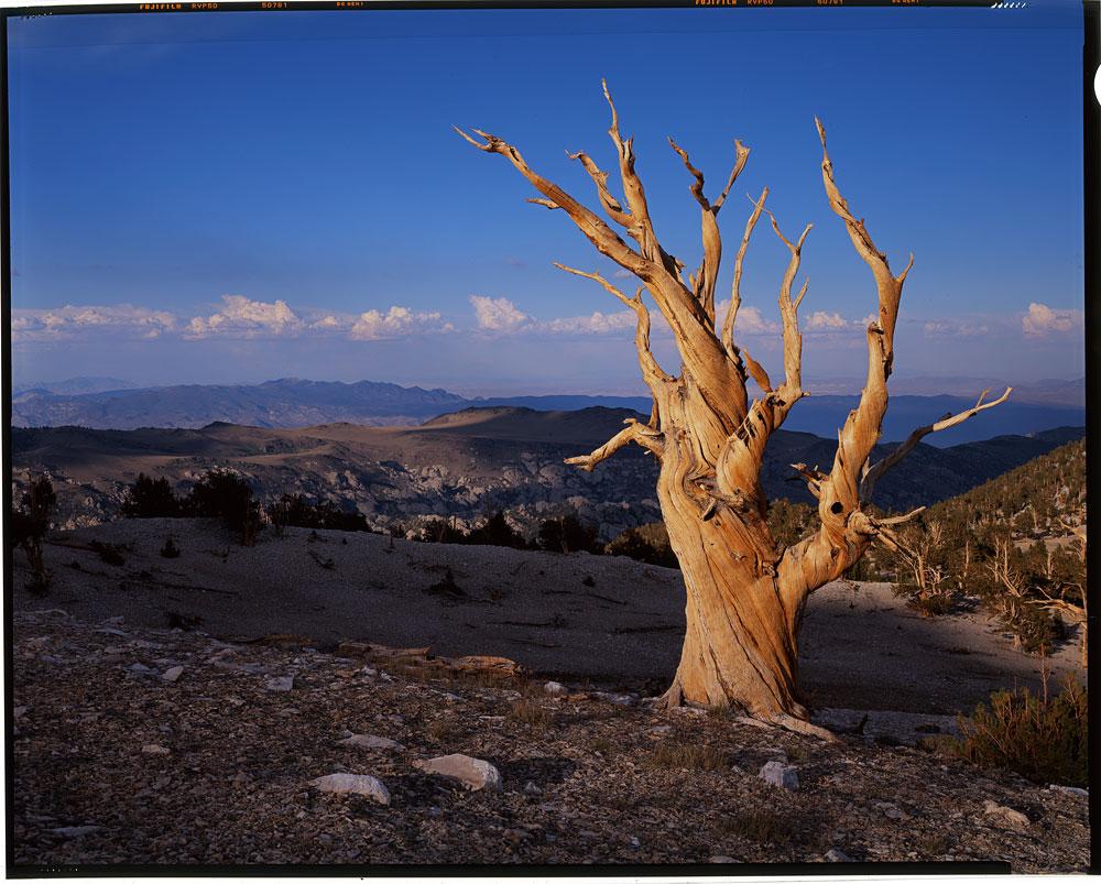 White Mountains Aug 2012 Ben Horne Photography